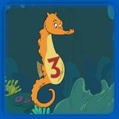 Seahorse Count